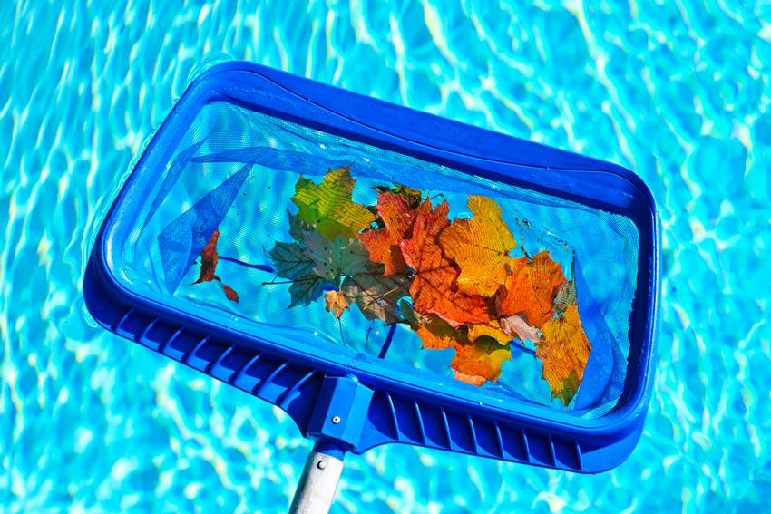 limpieza hojas piscina