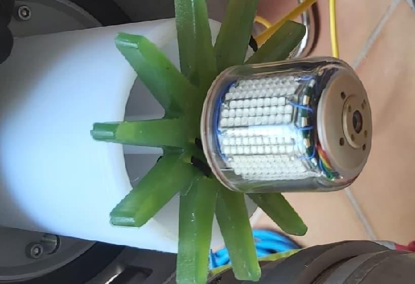 Sistema de Curado mediante LED